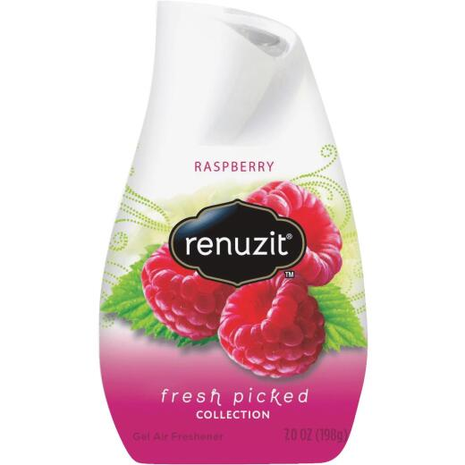Renuzit 7 Oz. Raspberry Solid Air Freshener