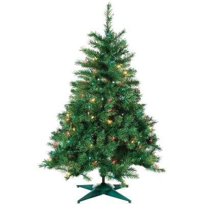 Sterling 2 Ft. Colorado Spruce 50-Bulb Multi Incandescent Prelit Artificial Christmas Tree